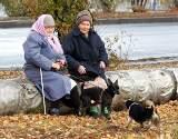 Как рассчитать пенсию по старости женщине 1969 года рождения